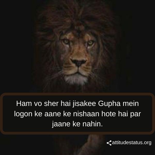 Lion Attitude captions