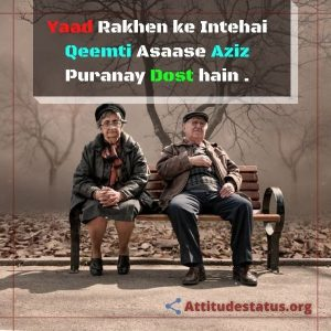 Friends Yaari Dosti Friends Quotes