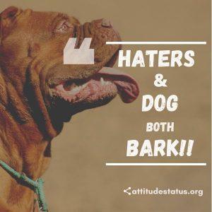 Dangerous attitude status about haters
