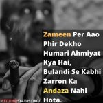 zameen per ao phir dakho humari ahmiyat shayari in picture