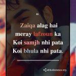 Attitude Captions For Boys Hindi, Roman Urdu Image HD