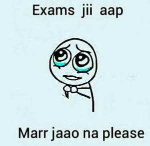 mar jow exam dp